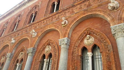 Milan's University.