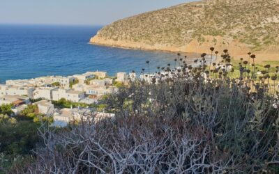 Apollonas: The ancient port of marble shipments